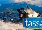 Spring Bay Seafoods, 488 to 496 Freestone Point Road, Triabunna, Tas 7190