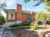 366 West Tamar Road, Riverside, Tas 7250