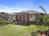 4 Morgan Close, Manly West, Qld 4179