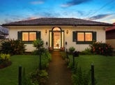 147 King Georges Road, Wiley Park, NSW 2195