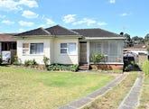 36 Beaumont Street, Smithfield, NSW 2164