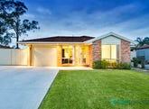20 Dawes Place, Bligh Park, NSW 2756