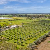 1659 Boundary Road, Gawler River, SA 5118