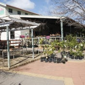 33-35 Forbes Rd, Parkes, NSW 2870