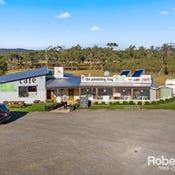 16494 Tasman Highway, Bicheno, Tas 7215