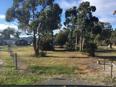 16 Olive Place, White Beach, Tas 7184
