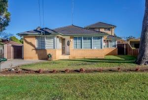 17 Benine Drive, Cambridge Park, NSW 2747