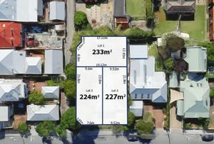 8 Thompson Street, North Perth, WA 6006