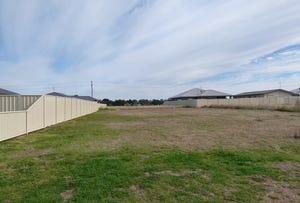 7 Dunstan Close, Forbes, NSW 2871
