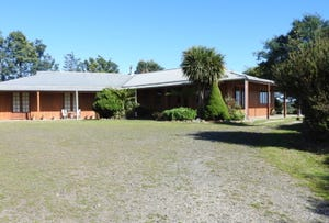 293 Gillespies Road, Nabowla, Tas 7260
