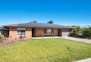19 McPharlin Avenue, Redwood Park, SA 5097