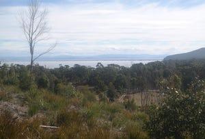 89 White Beach Road, White Beach, Tas 7184