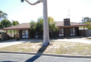 151 WIRRAWAY DRIVE, Deniliquin, NSW 2710