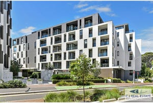 305/2 Scotsman St., Forest Lodge, NSW 2037
