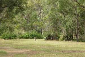 Lot 3 Black Creek Road, Nerimbera, Qld 4701