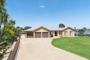3 Spoonbill Close, Aberglasslyn, NSW 2320