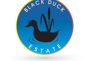 Lot 21 Black Duck Estate, Murrumba Downs, Qld 4503