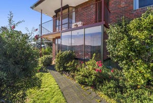 16 Village Drive, Kingston, Tas 7050
