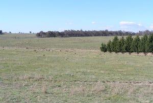 Ilford Hall Road, Mudgee, NSW 2850