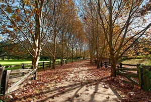 83 Finns Road, Kulnura, NSW 2250