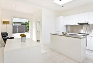 11 Chester Street, Petersham, NSW 2049
