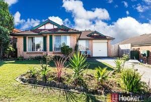 12 Alexandra Place, Glendenning, NSW 2761