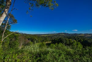 Lot 4, 95 Newes Road, Coorabell, NSW 2479