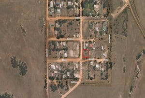 Lot 193 Eighth St, Wangary, SA 5607