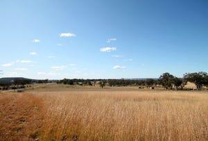 Old Bundarra Road, Inverell, NSW 2360