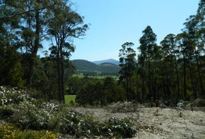 Lot 1, 247 Lower Swamp Road, Lachlan, Tas 7140