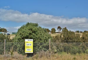 Lot 12 Avoca Road, Murray Bridge, SA 5253