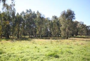 Lot 264, 264 Narrung Street, Wagga Wagga, NSW 2650