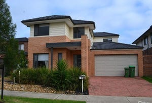 39 Rush Lily Drive, Officer, Vic 3809