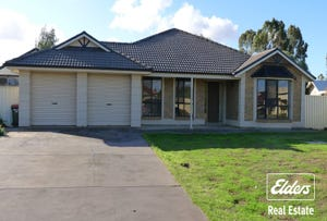 12 Meadow Lane, Roseworthy, SA 5371