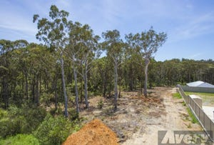 40 Earswick Crescent, Buttaba, NSW 2283