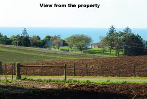 237 Tollymore Road, Table Cape, Tas 7325