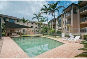 33/300 Sir Fred Schonell Drive, St Lucia, Qld 4067