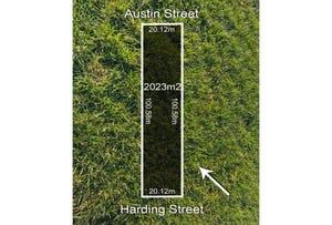 Austin Street, Winchelsea, Vic 3241