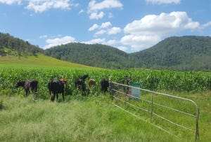 Lot 140 Cookes Rd, Conondale, Qld 4552