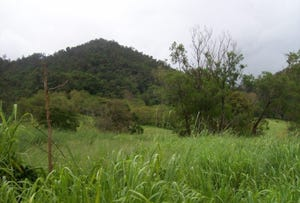 Lot 5 Brandy Creek Road, Brandy Creek, Qld 4800