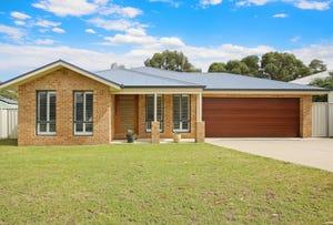 117 Newton Circuit, Thurgoona, NSW 2640