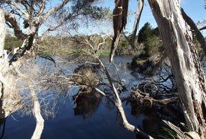 Chimneys Lagoon, St Helens, Tas 7216