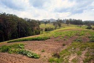 Lot 576 Wirrimbi Road, Newee Creek, NSW 2447