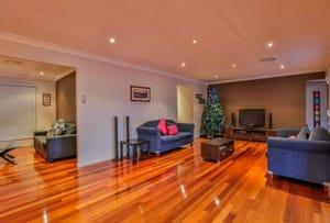 8 Tristania Street, Mount Annan, NSW 2567