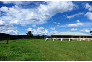 116 Mollydale Road, Dorrigo, NSW 2453