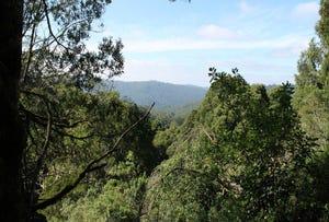 1110 Skenes Creek Road, Tanybryn, Vic 3249