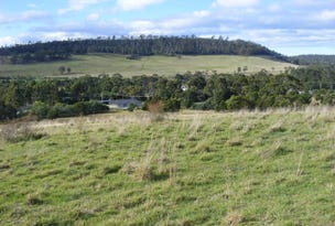 Lot 1 Boyle Street, Triabunna, Tas 7190