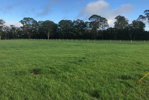 Proposed Lots 5 & 8 Mill Creek Road, Stroud, NSW 2425