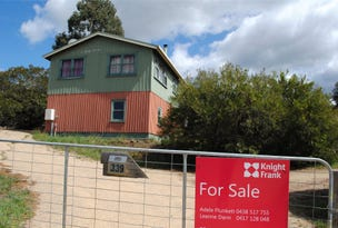 339 Swan River Road, Dolphin Sands, Tas 7190