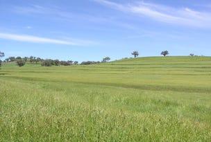 Woodstock Whittons Rd, Quirindi, NSW 2343